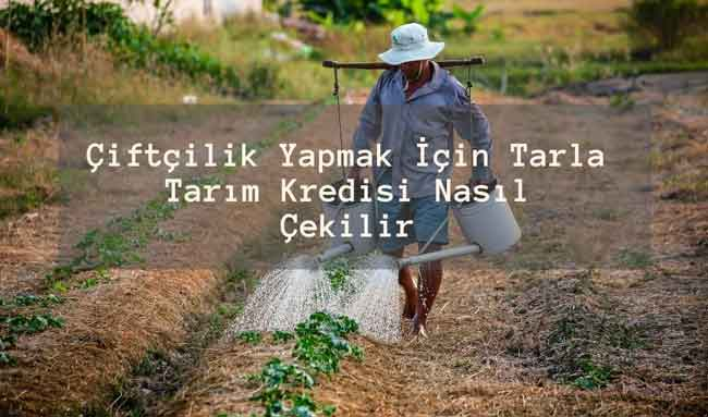 Çiftçilik Yapmak İçin Tarla Tarım Kredisi Nasıl Çekilir